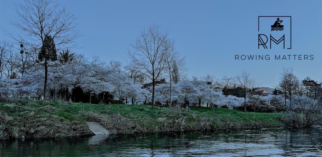 Frühling an der Roseninsel in Bad Kreuznach