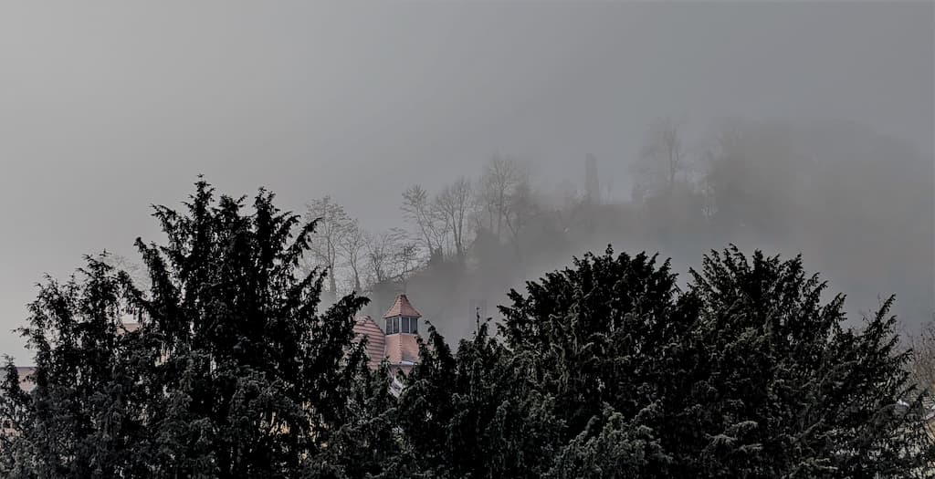 Nebel über der Kauzenburg in Bad Kreuznach